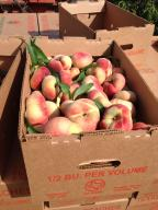 donut peaches in bulk